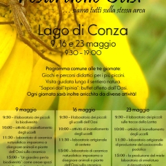 Locandina festa oasi 2010 copia